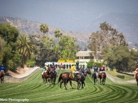 Santa Anita Park downhill turf course returns